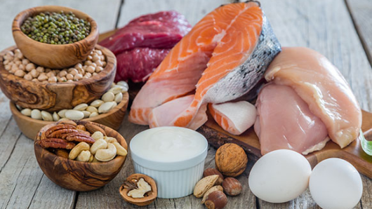 Раскрыта истинная важность белковых продуктов