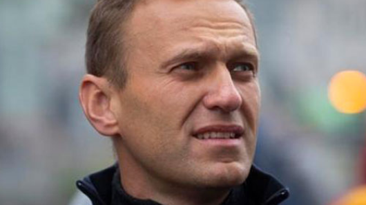 ВМИДе заявили оботсутствии «российского следа» вделе Навального